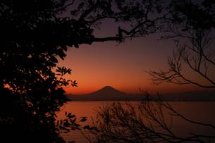 江の島の夕焼けと富士山のシルエットの写真素材 [FYI03449717]