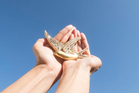 鳥のモチーフを持つ空に伸びる手02の写真素材 [FYI03449899]
