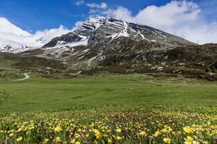 スイス、シンプロン峠の写真素材 [FYI03450188]