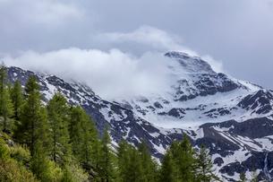 スイス、シンプロン峠からのスイスアルプスの写真素材 [FYI03450613]