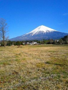 富士山の写真素材 [FYI03450620]