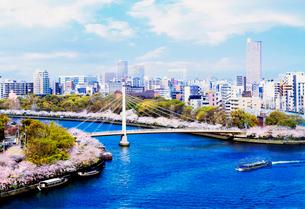 青空と桜と橋の写真素材 [FYI03450728]