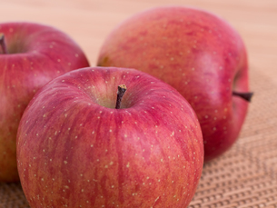 リンゴ フジの写真素材 [FYI03450838]