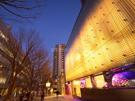夕暮れの六本木けやき坂通りの写真素材 [FYI03450851]