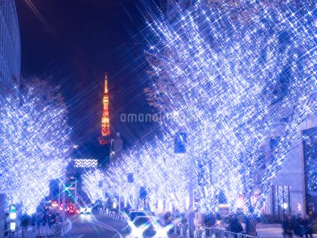 六本木 けやき坂通りのイルミネーションの写真素材 [FYI03450859]