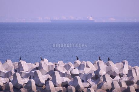 三重県四日市の工業地帯の海岸の風景の写真素材 [FYI03451051]