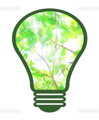 電球の中の新緑のイラスト素材 [FYI03451200]