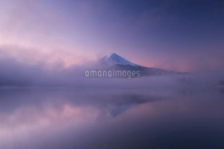 幻想的な朝の富士山の写真素材 [FYI03451349]