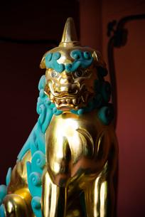 久能山東照宮 楼門の狛犬の写真素材 [FYI03451558]