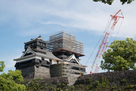 修復作業中の熊本城天守閣の写真素材 [FYI03451567]
