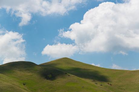 ビーナスラインの雲と影の写真素材 [FYI03451569]