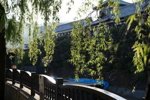 松川遊歩道から見た東海館の写真素材 [FYI03451599]