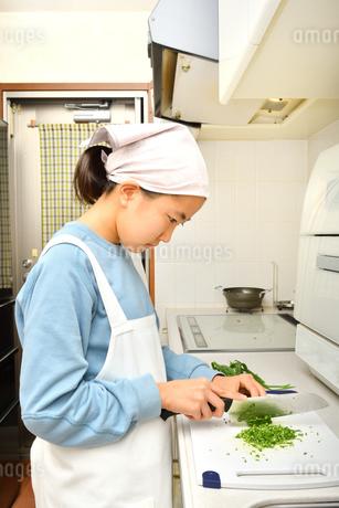 キッチンで料理をする女の子の写真素材 [FYI03451626]