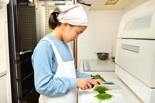 キッチンで料理をする女の子の写真素材 [FYI03451628]
