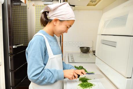 キッチンで料理をする女の子の写真素材 [FYI03451629]