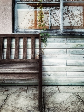 窓と椅子と植物の写真素材 [FYI03451740]