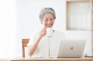 パソコンと女性の写真素材 [FYI03451782]