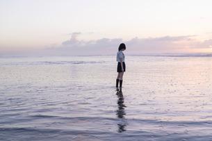 女子高生 海 後ろ姿 輝きの写真素材 [FYI03451840]
