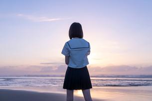 女子高生 海 後ろ姿 輝きの写真素材 [FYI03451858]
