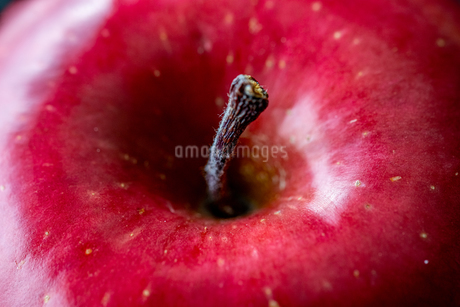 Close up view of red appleの写真素材 [FYI03452014]