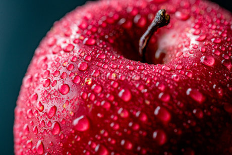 Close up view of red appleの写真素材 [FYI03452015]