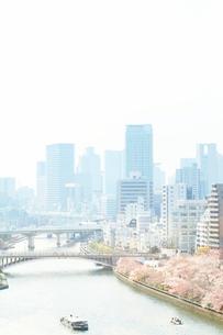 南天満公園の桜とビル群の写真素材 [FYI03452665]
