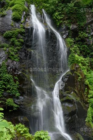 裏見の滝(栃木県日光市)の写真素材 [FYI03452873]