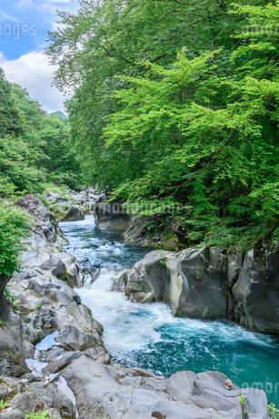 憾満ヶ淵(栃木県日光市)の写真素材 [FYI03452877]