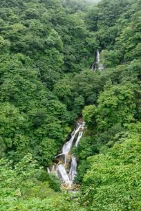 霧降の滝(栃木県日光市)の写真素材 [FYI03452878]