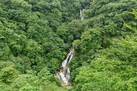 霧降の滝(栃木県日光市)の写真素材 [FYI03452880]