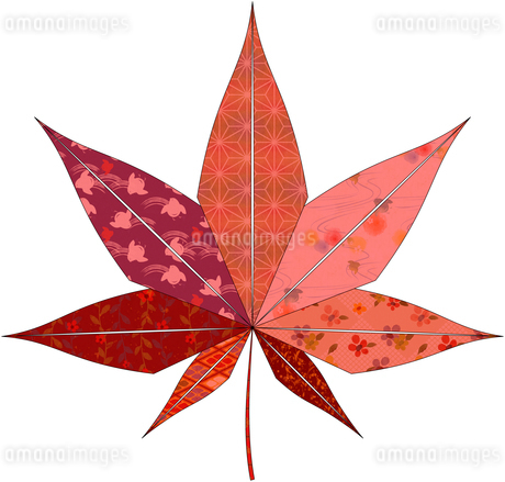 紅葉(折紙風)のイラスト素材 [FYI03452903]