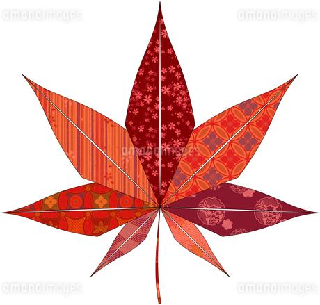 紅葉(折紙風)のイラスト素材 [FYI03452905]