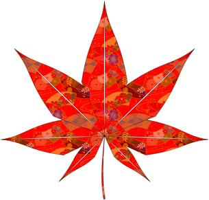 紅葉(折紙風)のイラスト素材 [FYI03452916]