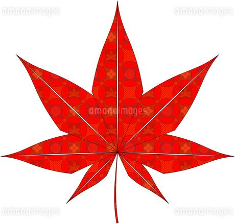紅葉(折紙風)のイラスト素材 [FYI03452919]