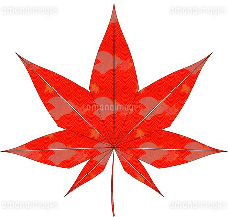 紅葉(折紙風)のイラスト素材 [FYI03452921]