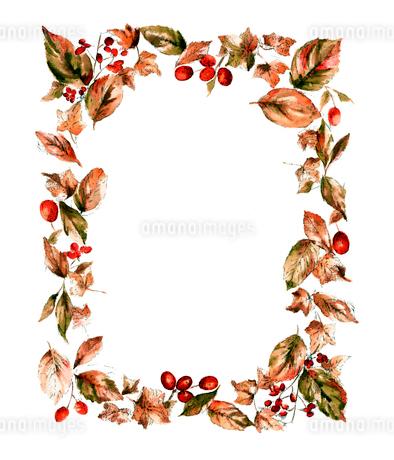 水彩 秋の実と葉っぱのフレームのイラスト素材 [FYI03452961]