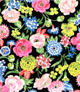 手描き 花柄 黒地 花柄のイラスト素材 [FYI03452970]