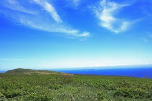6月 天売島と水平線の写真素材 [FYI03453072]