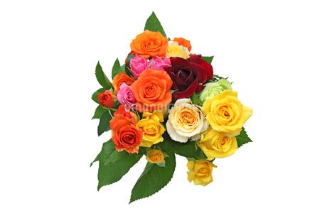 薔薇の花束の写真素材 [FYI03453737]