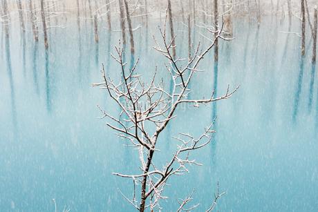 冬の青い池の写真素材 [FYI03453741]