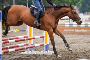 障害を飛ぶ馬の写真素材 [FYI03453750]