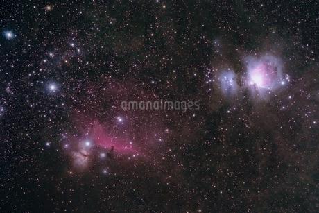 オリオン座中心部の写真素材 [FYI03453760]