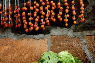 干し柿の写真素材 [FYI03453866]