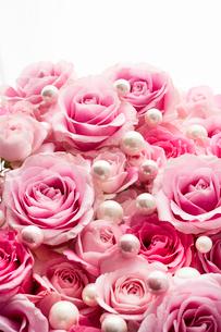 一面のピンクのバラの花と真珠の写真素材 [FYI03453884]