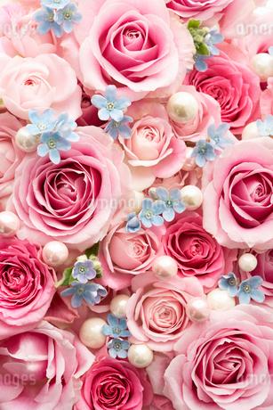 一面のピンクのバラの花と空色の小花と真珠の写真素材 [FYI03453887]