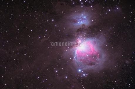 オリオン大星雲の写真素材 [FYI03454421]