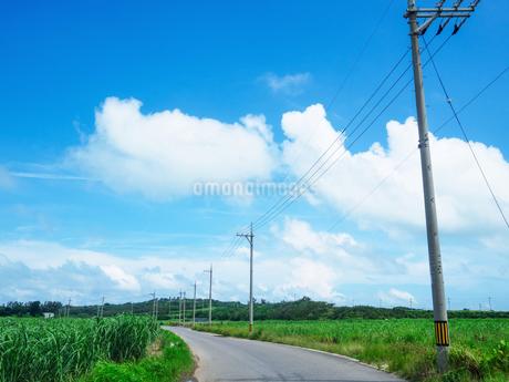 小浜島の風景の写真素材 [FYI03454659]