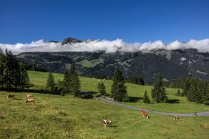 スイス、オーバーラント、ヴェンゲンの風景の写真素材 [FYI03454885]