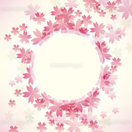 桜 背景 フレームのイラスト素材 [FYI03454948]