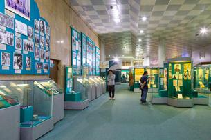 ウズベキスタン国立歴史博物館の展示風景の写真素材 [FYI03455375]